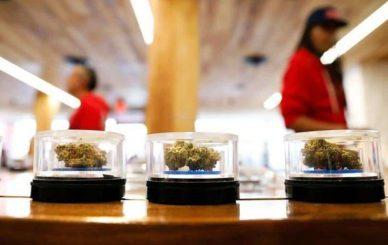 dispensarios-de-marihuana-en-California-High-Times